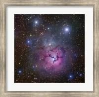 The Trifid Nebula located in Sagittarius Fine Art Print
