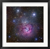 The Trifid Nebula located in Sagittarius Fine Art Print