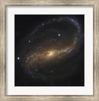 Barred Spiral Galaxy in the Constellation Pegasus Fine Art Print
