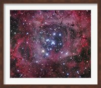 The Open Cluster within the Rosette Nebula (NGC 2244) Fine Art Print