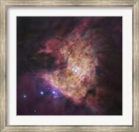 Trapezium Cluster at Center of Orion Nebula Fine Art Print