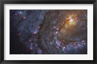 Close-up of the Southern Pinwheel Galaxy Fine Art Print