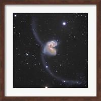 The Antennae Galaxies in the constellation Corvus Fine Art Print