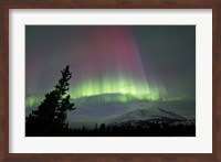 Red and Green Aurora Borealis over Carcross Desert Fine Art Print