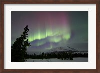 Red and Green Aurora Borealis over Carcross Desert, Canada Fine Art Print