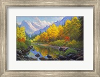 Mountain Stream Fine Art Print