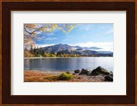 Glendhu Bay, Lake Wanaka, Otago, South Island, New Zealand Fine Art Print