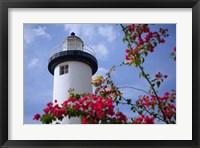Puerto Rico, Viegues Island, lighthouse of Rincon Fine Art Print