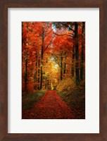 Forest Garden Fine Art Print