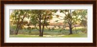 Mill Stream Willows Fine Art Print