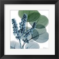 Lilly Of Eucalyptus Fine Art Print