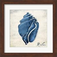 Inspirational Blue Shell II Fine Art Print