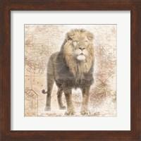 African  Animals - Lion Fine Art Print