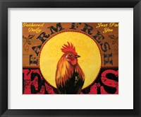 Farm to Table Rooster 01 Fine Art Print