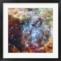 Merging Clusters in 30 Doradus (Non-annotated) Fine Art Print
