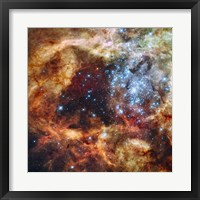 Hubble's Festive View of a Grand Star-Forming Region Fine Art Print