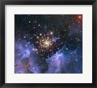 Starburst Cluster Shows Celestial Fireworks Fine Art Print