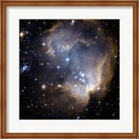 Hubble Observes Infant Stars in Nearby Galaxy Fine Art Print