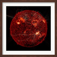 Magnetic Field Visible on the Sun Fine Art Print