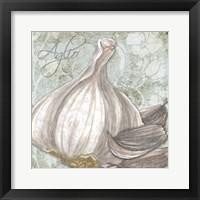 Buon Appetito Garlic Fine Art Print