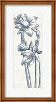 Eden II  Indigo and White Fine Art Print