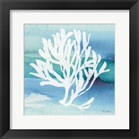 Sea Life Coral I Fine Art Print