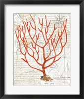Textured Coral I Fine Art Print