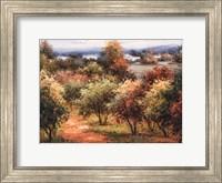 Sun Dappled Country Road Fine Art Print