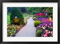 Path and Flower Beds in Butchart Gardens, Victoria, British Columbia, Canada Fine Art Print