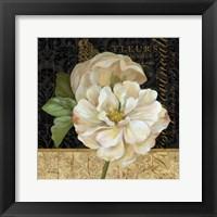 Antique Still Life Rose Fine Art Print