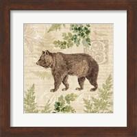 Woodland Trail II (Bear) Fine Art Print
