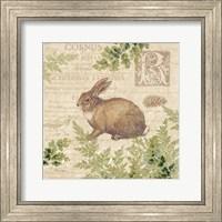 Woodland Trail IV (Rabbit) Fine Art Print