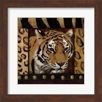 Tiger Bordered Fine Art Print