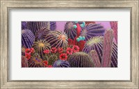 Barrel Cactus 1 Fine Art Print