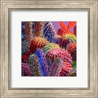 Barrel Cactus 4 Fine Art Print