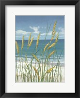 Summer Breeze II Fine Art Print