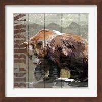 Open Season Bear Fine Art Print