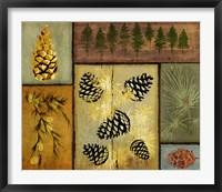 Pines and Oak I Fine Art Print