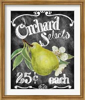 Orchard Selects Fine Art Print