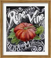 Chalkboard Tomato Fine Art Print