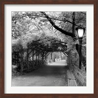 Central Park Pergola Fine Art Print