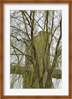 Veiled Brooklyn Bridge Fine Art Print