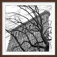 Flatiron with Tree (b/w) (detail) Fine Art Print