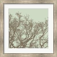 Winter Tree II Fine Art Print