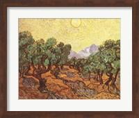 The Olive Trees, c.1889 Fine Art Print