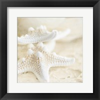 Seashore Stars Fine Art Print