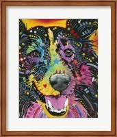 Smiling Collie Fine Art Print