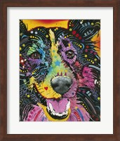 Smiling Collie Fine Art Print