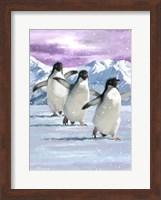 Penguins Fine Art Print