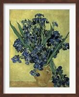 Irises(1890) Fine Art Print